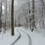 Serenity Lane with snow