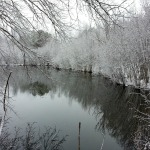 pond winter