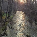 creek sunset