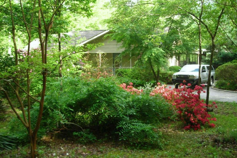 gili front garden
