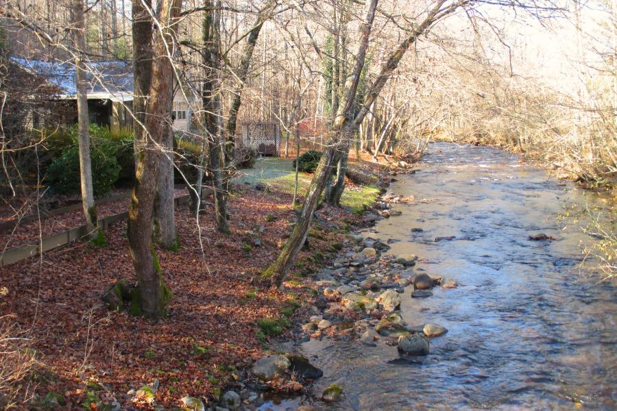 rear view creek