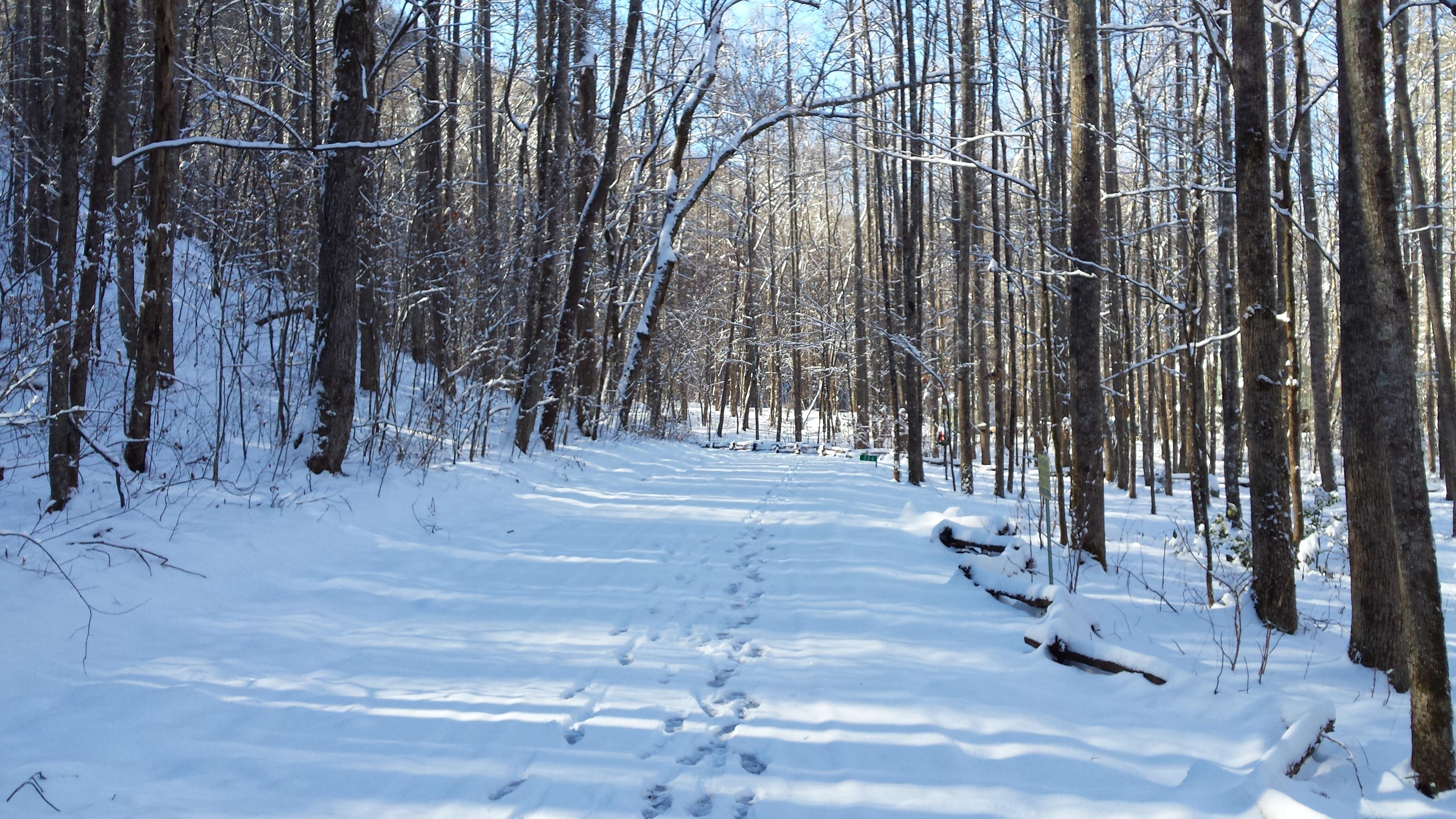 snow on serenity lane