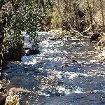 Tusquittee Creek