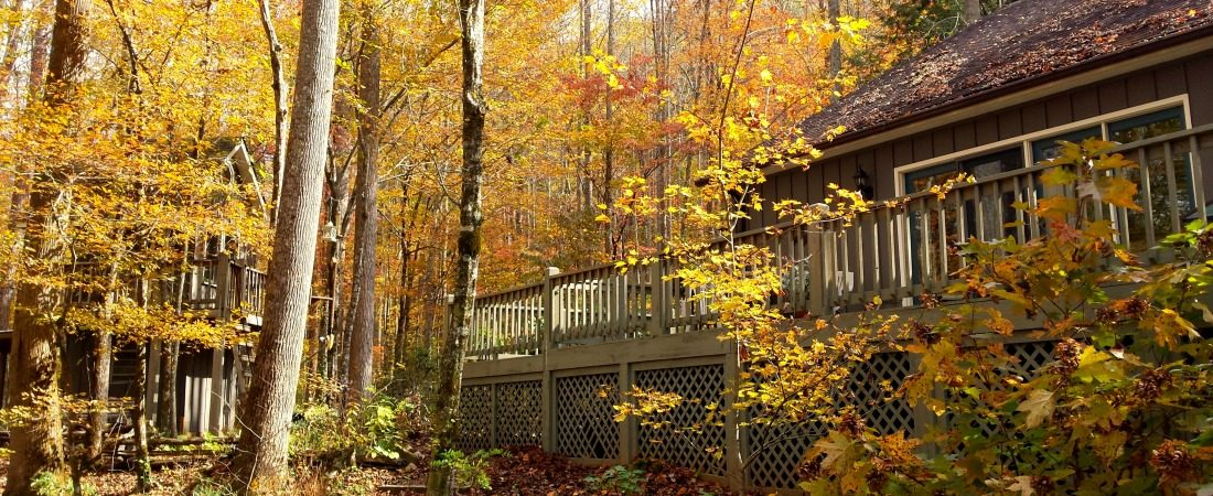 1100x450 back deck fall colors